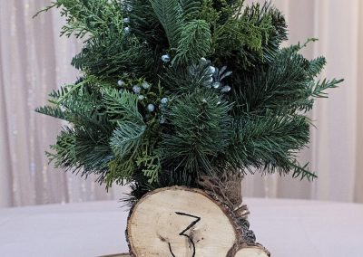 Calgary Wedding Decor- Centrepieces Mini Trees and wood